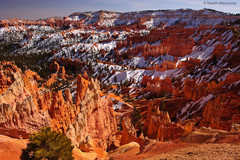 USA . Bryce Canyon